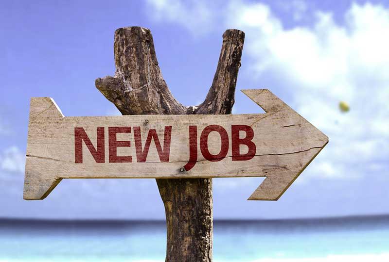find-new-job