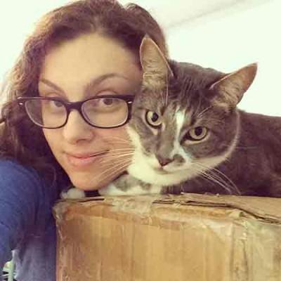 Career Spotlight-office-manager-cat
