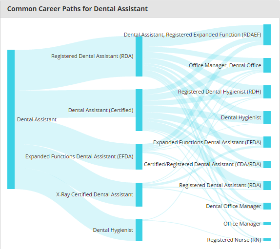 common career paths