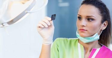 dental-assistant-resume