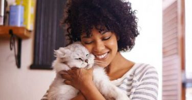 cat-cuddling-job